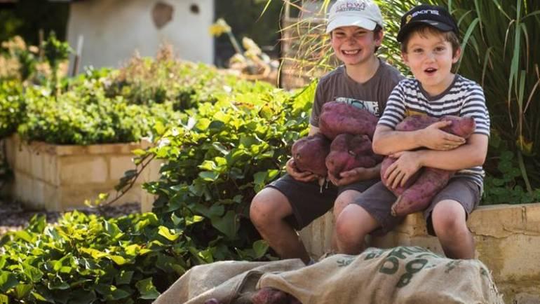 Hilton Harvest Community Garden